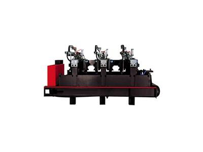 Fully Automatic Lychee Surface Stone Machinery