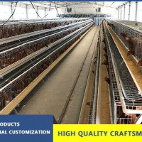 Non-rusty Three-tiers Layer Hens Cage
