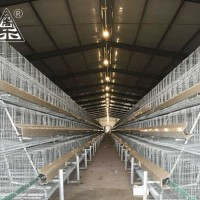 Staged Hot Galvanized Cage Equipment
