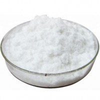 Top quality Citicoline sodium powder with best price 33818-15-4