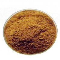 99% High Purity and Top Quality epimedium extract icariin with reasonable price on Hot Selling!!