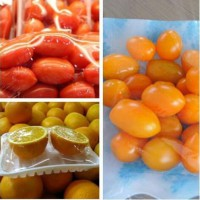 FDA approved Top quality PVC Cling Film For Food Wrap